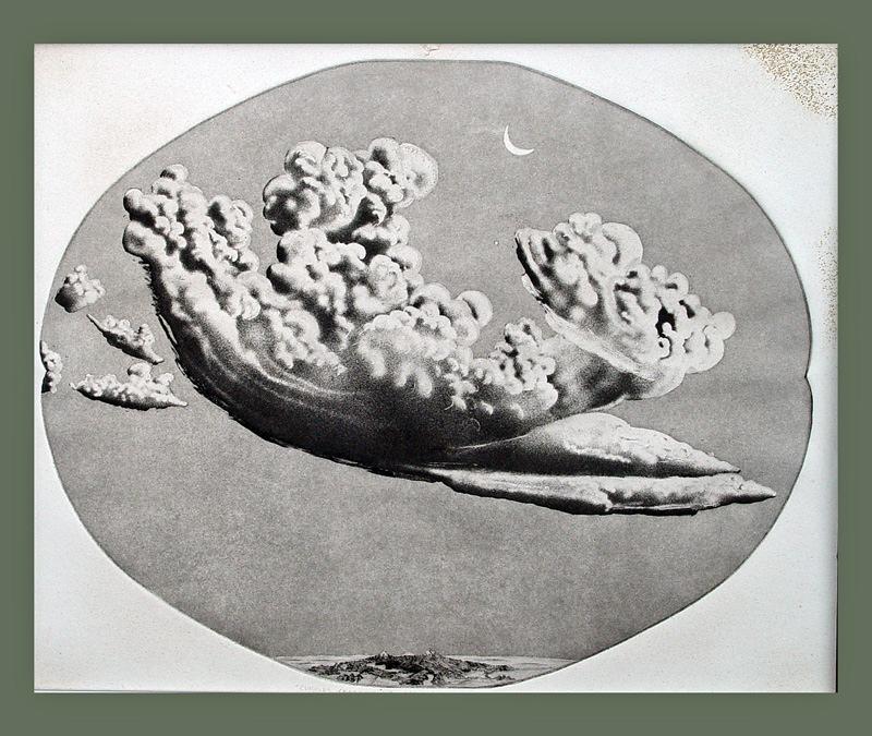 Cumulus Cerebellum